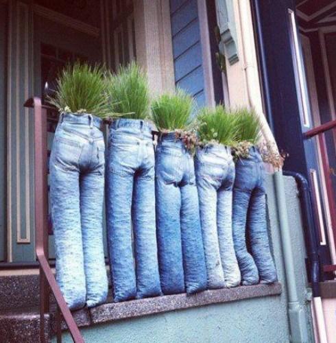 Jeans portavasi